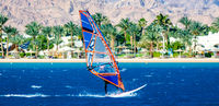 surfer rides on the background of the beach with a hotel and palm trees in Egypt Dahab South Sinai