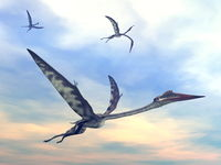 Quetzalcoatlus flying together by sunset - 3D render