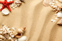 Seashells And Starfish On Sand Background