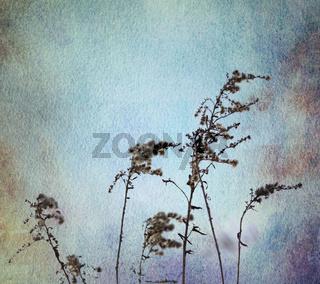 gräser aquarell blau ocker sepia