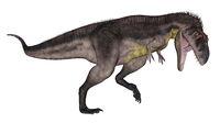Tyrannotitan dinosaur roaring - 3D render