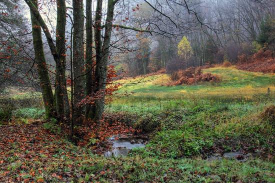 The Eiterbach valley in autumn