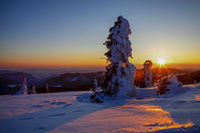 Winter mood on the Feldberg in the Black Forest