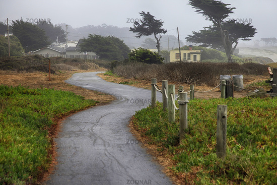 Foggy morning in California. USA, Half Moon Bay