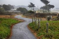 Foggy morning in California. USA, Half Moon Bay
