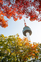 Namsan Seoul Tower with autumn maple leaves in Korea