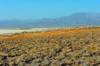 Infinite depression of Danakil desert, Ethiopia