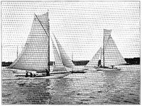 Sailing Regatta. Illustration of the 19th century. White background.