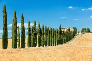 View the actual landscape of Tuscany