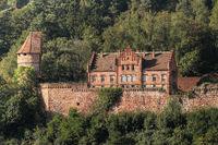 Castle Zwingenberg