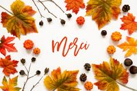 Bright Colorful Autumn Leaf Decoration, French Text Merci Means Thank You