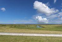 Landscape with salt marshes by Fedderwardersiel