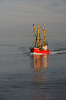 Fishing trawler on the North Sea, Buesum, Schleswig-Holstein, Germany