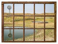cattle drinking hole in a prairie of Nebraska Sandhills