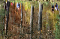 a walk near a lake