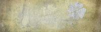 stein wand beton kleeblatt symbol