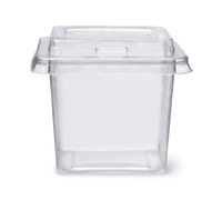 Plastic disposable clear food box