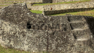 close up of a ceremonial rock at machu picchu with a feeding llama