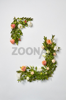 Greeting card from evergreen branches and coral flowers.