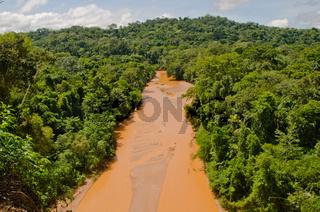 Amazonas-Regenwald und Fluss im Madidi-Nationalpark in Bolivien