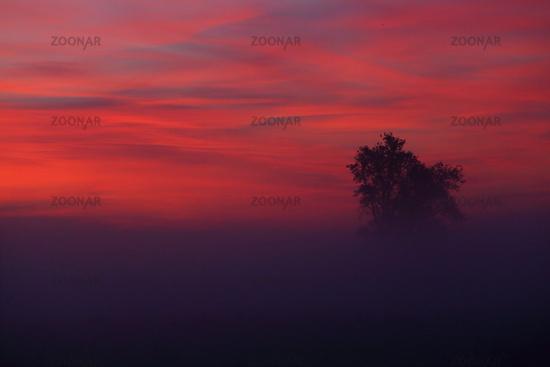 Sunrise in Brandenburg, Germany