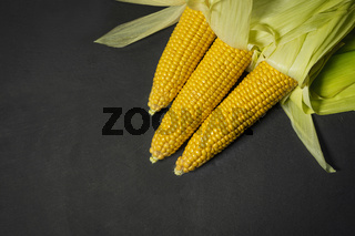 Ripe young sweet corn cob with leaves on background