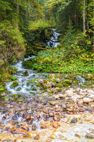 Beautiful stream in the magic forest, feeder river to Hintersee, Berchtsgaden National Park
