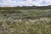 landscape near list, sylt island, germany