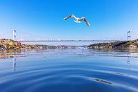 Waters of the Boshporus strait and the Fatih Sultan Mehmet Bridge, Istanbul, Turkey