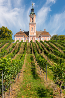 Vineyards and the pilgrimage church at Birnau