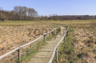 Wanderweg durch die Schopflocher Moorlandschaft, Schwäbische Alb