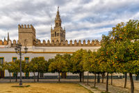 view of the historic Patio de Banderas in Seville with the cathedral in the background