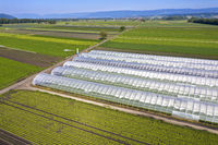 Greenhouses and cropland for the cultivation of vegetables, Kerzers, canton of Fribourg, Switzerland