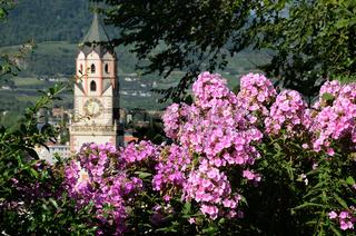 Meran Rhododendronblüte, Pfarrkirche