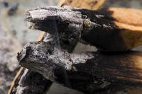 Smudging ceremony using Peruvian Palo Santo holy wood incense stick
