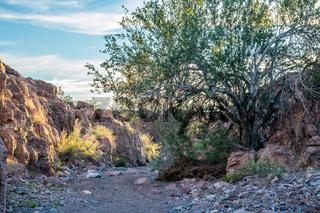 An overlooking view of nature in Yuma, Arizona