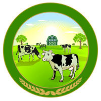 Organic dairy products illustration with cows - vector illustration