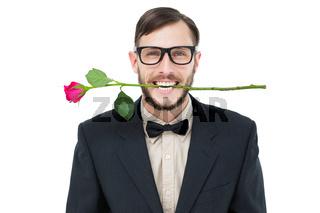 Geeky hipster holding rose between teeth