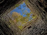 Castle ruin Roggenbach, district of Waldshut, southern Black Forest