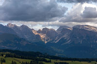 Seiser Alm, Alpe di Siusi, with a view to Odle mountains, South Tyroluth Tyrol