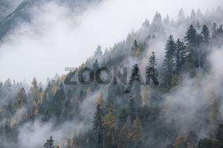 Mystic cloudy and foggy autumn alpine mountain slopes scene. Austrian Lienzer Dolomiten Alps.