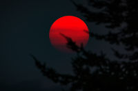 Sunset through Wildfire Smoke, Northern California, USA