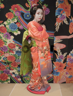 Maiko in kimono posing in front of a background with traditional floral pattern on a tatami.