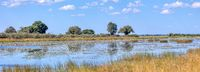 typical African river landscape, Bwabwata, Namibia