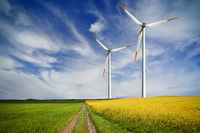 Global Green Energy Investments