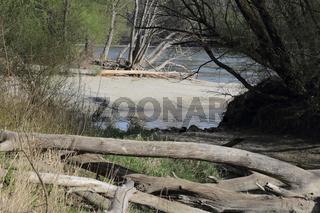 Nationalpark Donau-Auen, Oesterreich