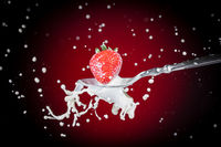 A tasty ripe red Strawberry fall into milk on a tablespoon and are splashed