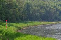 Elbe river and green bank