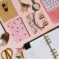Various business and stationary supplies knolled on white: laptop, notebooks, flowers, clips etc