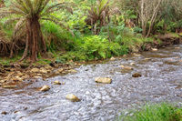 Ovens River - Harrietville